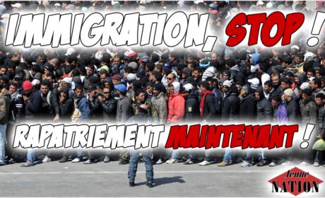 Retraites : l'immigration ne peut remplacer la natalité !