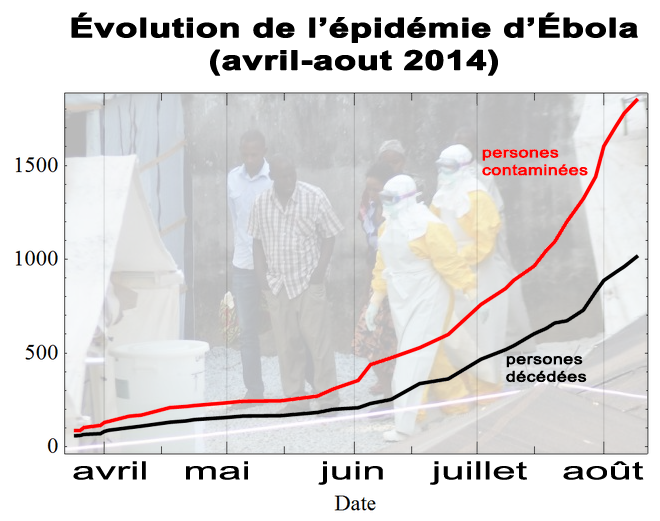 évolution-ebola-avril-aout-2014-1