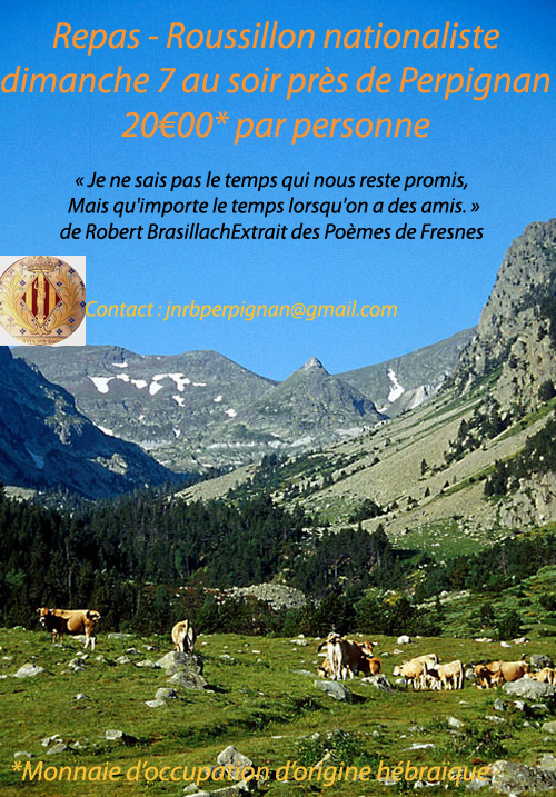 J-Bussiere_pyrenees-cat