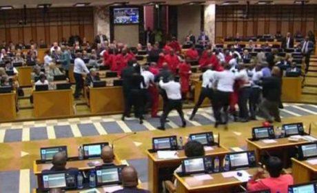 Afrique du sud : la démocratie arc-en-ciel en action