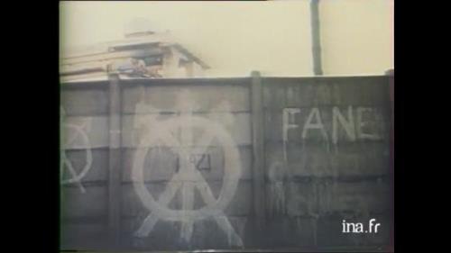 La FANE, Fédération d'Action Nationale et Européenne