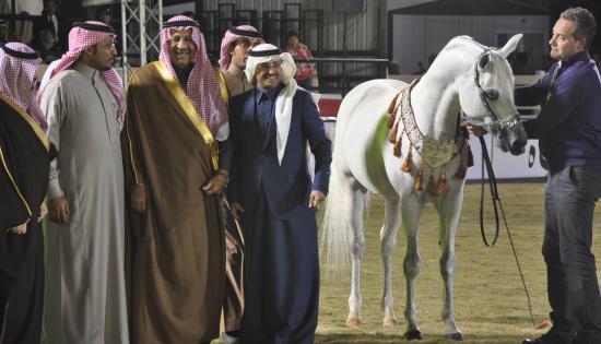 Arabie Saoudite : le milliardaire perçoit 460 000 euros de l'Europe pour élever des chevaux