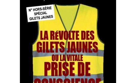 Nouveauté : La révolte des Gilets Jaunes – Synthèse nationale hors-série n°6