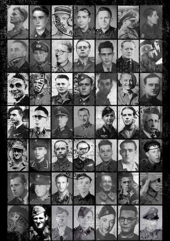 Encyclopédie de l'Ordre Nouveau – Hors-série Partie II – Français sous l'uniforme allemand  : Sous-officiers & hommes du rang de la Waffen-SS (vidéo)