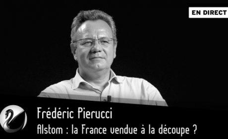 Alstom : la France vendue à la découpe ? – Frédéric Pierucci (vidéo)