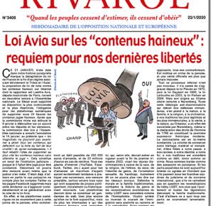 """Loi Avia sur les """"contenus haineux"""" : requiem pour nos dernières libertés"""