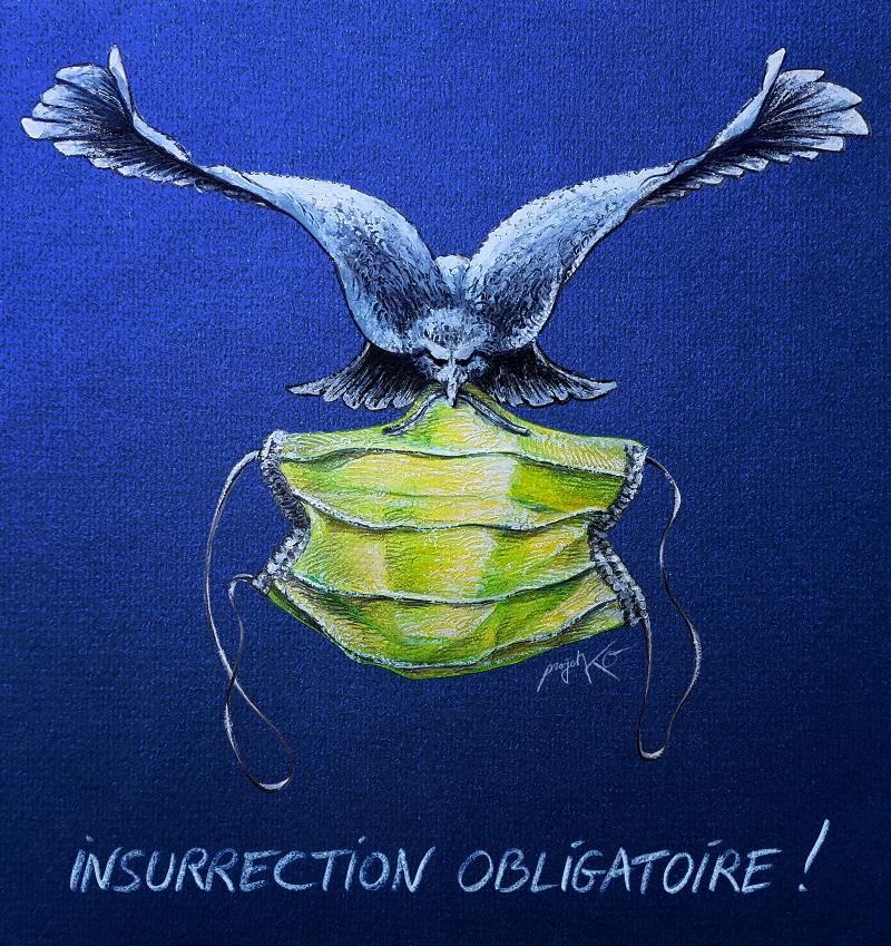 Insurrection obligatoire- ProjetKO – Un bon dessin…